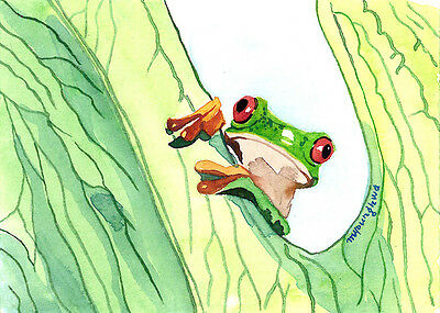 Frog ACEO Limited Edition Smitten Art print of an Original watercolor