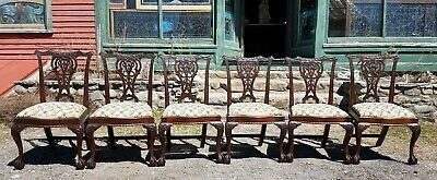 Great Set Of 6 Mahogany Chippendale Dining Chairs