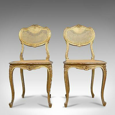 Antique Louis XV Revival Salon Chairs, French, Giltwood, Cane, C19th, Circa 1900