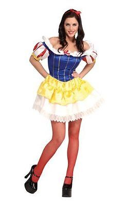 Secret Wishes Women's Adult Storybook Princess Halloween Costume Size Small New