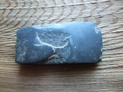 China. Neolithic Period. 2000Bc.  Jadite Axe.  Rare Item.  Nice Condition