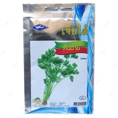7,500 Seed Thai Herb Celery Chia Tai Brand Quality Vegetable use Cultivation