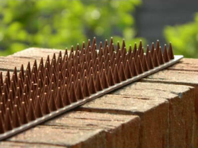 2x 4.4m Fence & Wall Spike Set Anti-Bird Pigeon Repeller Deterrent Defender