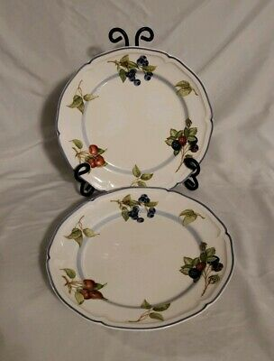 Set Of 2 Villeroy & Boch Dinner Plates Cottage Country Collection