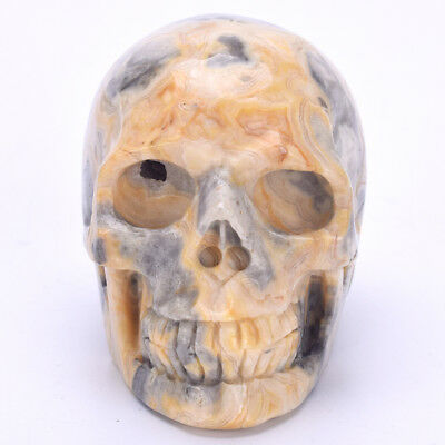 3.3''Natural Crazy Lace Agate Carved Quartz Crystal Skull Statue Crystal Healing
