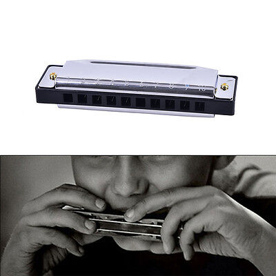 Blues Harmonica 10 Holes Key of C Musical Instrument Stainless Steel Fad.