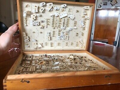 Vintage storebox of insects british with data labels attached