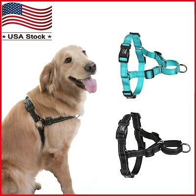 No Pull Nylon Dog Pet Walking Harness D Ring Buckle Step in Walk Safety Strap