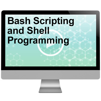 Bash Scripting and Shell Programming Video Tutorial Training