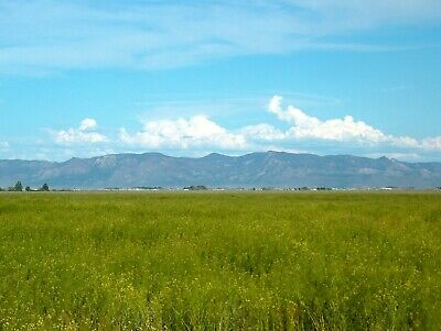 120 Acres Southern Utah Farm Potential Water Rights Included And Power Available