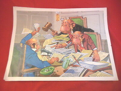 1D 5 Different LLOYD MONKEY BUSINESS Political Color Prints Stapco NY USA!