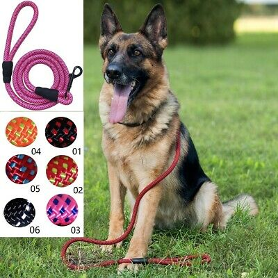 5ft Heavy Duty Nylon Light Weight Dog Leash Lead Rope with Handle for Large Dogs