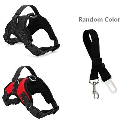 New Adjustable Dog Harness and Leash Set with Soft Nylon Vest for Pets S/M/L/XL