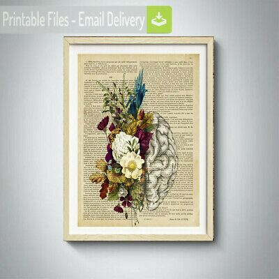 brain poster art ,human anatomy,retro vintage,gift for doctors,anatomical prints