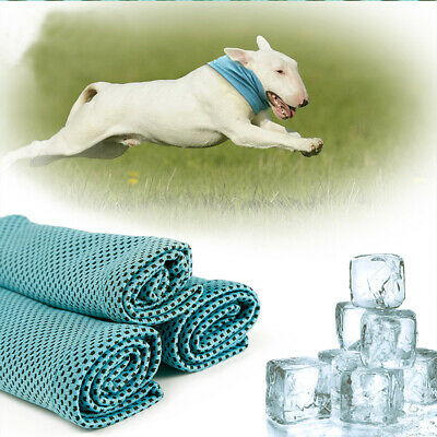 Pet Dog Cat Instant Ice Cooling Bandana Neck Scarf Summer Polyester Collar S/M/L