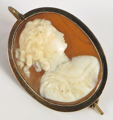 Antique 10K Yellow Gold Fine Woman Carved Shell Cameo Pendant Earring Rare