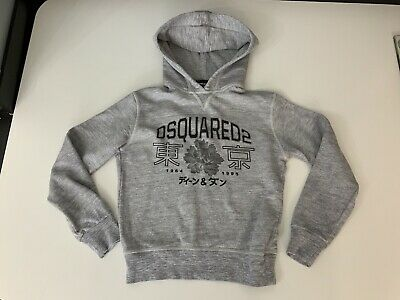 Dsquared2 Ds2 Boys Hoodie, Jumper, Size Age 10 Years, Grey, Immaculate
