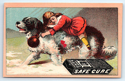 1800's Antique WARNER'S SAFE CURE Victorian DRUGSTORE Trade Card ST BERNARD DOG