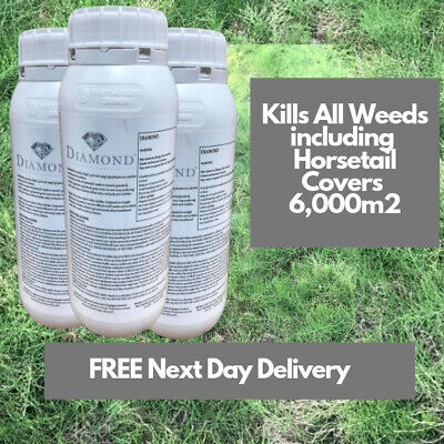 Kill Horse Mares Tail Diamond Weedkiller 3X1L Replaces Pearl