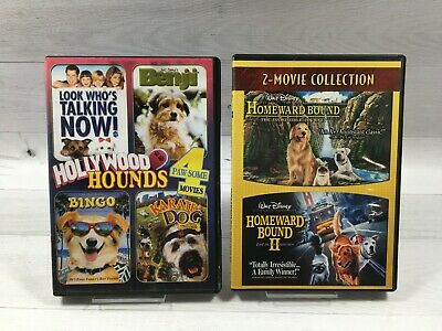 Disney Homeward Bound: Incredible Journey 1 & 2 + Hollywood Hounds Lot 6 Movies