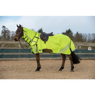 Gallop All In One Fly Rug with Free Fly