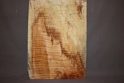 """Fingerboards-Group #13—5A Grade Flame Maple 24.5""""x2.5""""x.31"""""""
