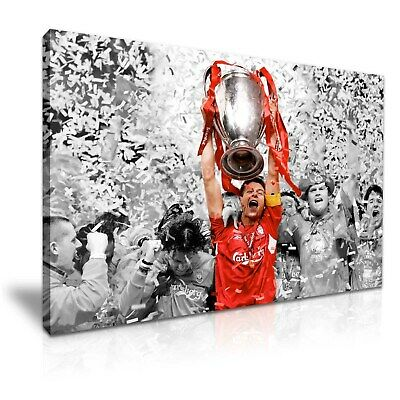 Steven Gerrard Liverpool Champions League Stretched Canvas ~ More Size