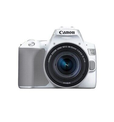 Canon EOS 250D Digital SLR Camera with 18-55mm IS STM Lens - Silver
