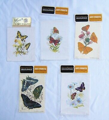 Vintage 5 Butterfly Art Prints for Decoupage, Transfer or Framing