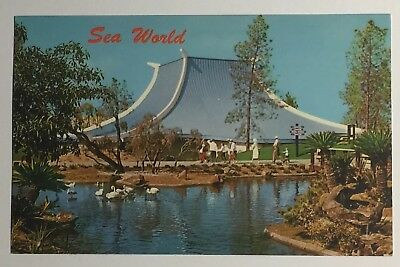Vintage San Diego Postcard of Sea World's Chicken of the Sea Theater