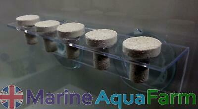 Marine 5 Hole Coral Suction Frag Rack, Lps, Sps, Reef, Tank, Fish, Plug, Ligh...