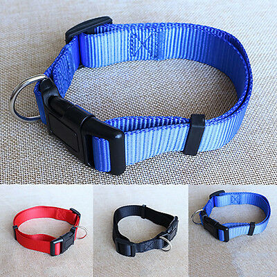 Simple durable Dog Collar Pet Puppy Cat Adjustable Nylon attach lead leash