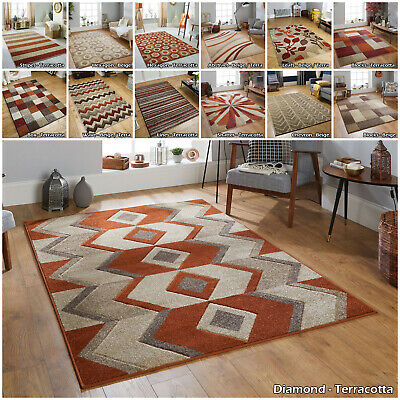 Smal Large Modern Quality Runner Geometric Floral Flower New Terracotta Sale Rug