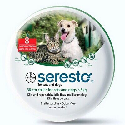 1 Pack Bayer Seresto Flea and Tick Collar For Cats And Dog 8 Month Protection US