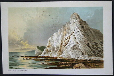1891 Cromolitografía - T. Nelson & Sons - Culver Cliff , Isle Of Wight M126