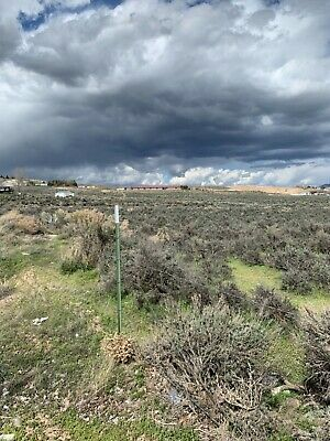 Own A Large 40 Acre Tract In Booming Elko, Nv With No Reserve