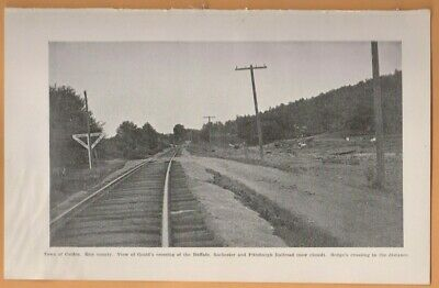 1899 railroad photo plate COLDEN NY Erie County train tracks Gould's Crossing