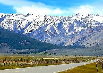 Property Auction! 10.38 Acres 2132 EAST 1539 NORTH, Nevada NO RESERVE!