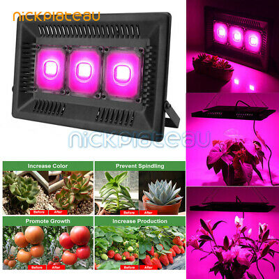 300W LED Grow Light Lamp Full Spectrum Hydroponic Veg Flower Bloom Indoor Plant