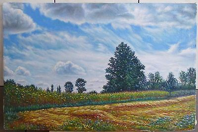 Hand painted Landscape ORIGINAL OIL canvas Painting wall ART home decor meadow