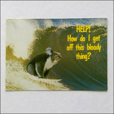 Help! How do I get off this bloody thing? Surfing Koala 1986 Postcard (P364)