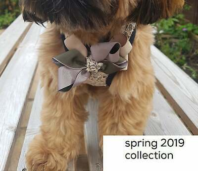 Caramel Daisies 'Collection' Pet Harness. Special Occasion. Luxury. Wedding.