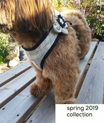 Check into Spring 'Collection' Pet Harness. Special Occasion. Luxury. Wedding.