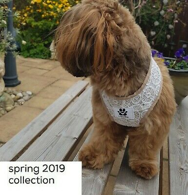 Vintage Catherine 'Collection' Pet Harness. Special Occasion. Luxury. Wedding.
