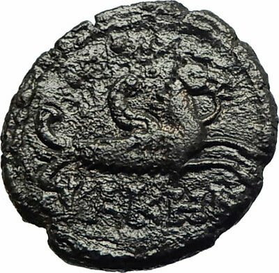 CARACALLA Very RARE Possibly Unpublished LAMPSAKOS Roman Coin HIPPOCAMP i77037
