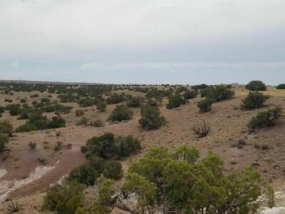 42.02 ACRES - 9120 DAWN STAR TRAIL, SNOWFLAKE, AZ - AWESOME LOCATION! $150/mo