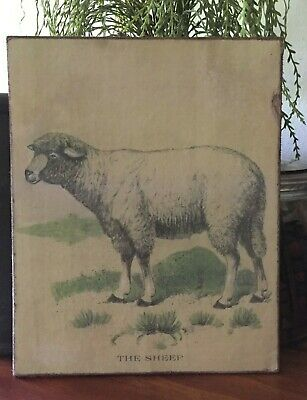 Antique Reproduction Farmhouse Primitive Sheep Print on Canvas Board 8x10""