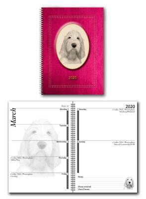 Italian Spinone 2020 Large Dog Show Diary with Show Dates a choice of 7 colours