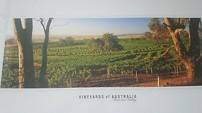 Vineyards Of Australia - Wine - Barossa Valley South Australia