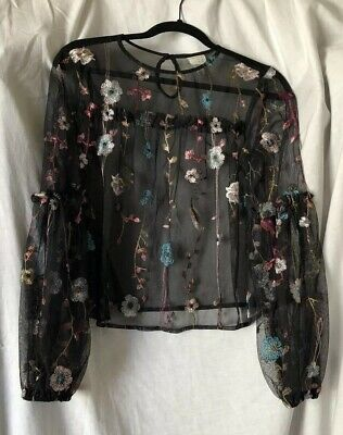 Womens Size XS Long Sleeve Embroidered Floral Blouse Top Blue Pink Black Sheer